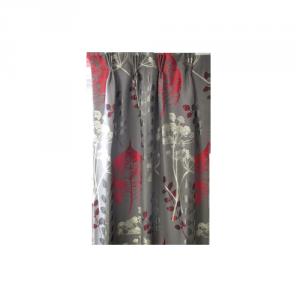 cortina_08